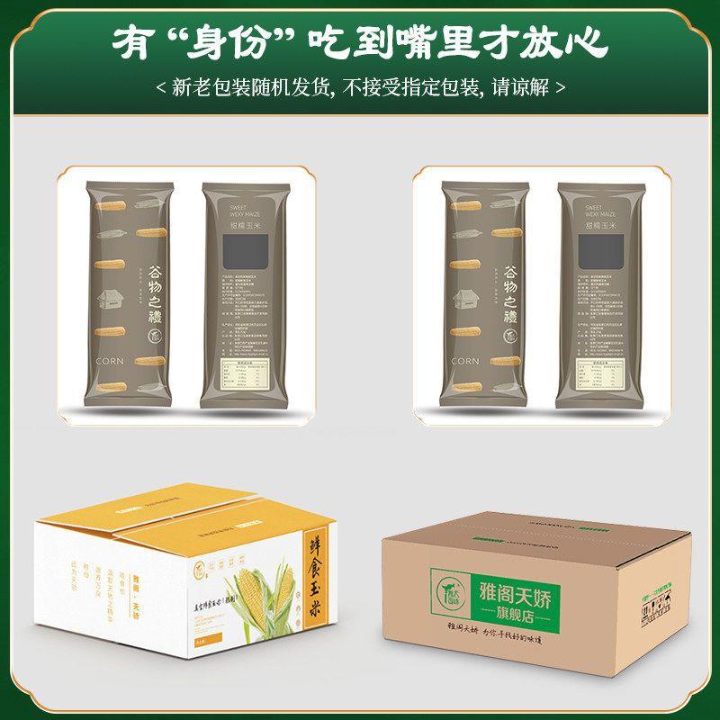 54336-黑糯玉米新鲜甜玉米蔬菜包邮当季特产整箱玉米棒8根批发黑玉米-详情图