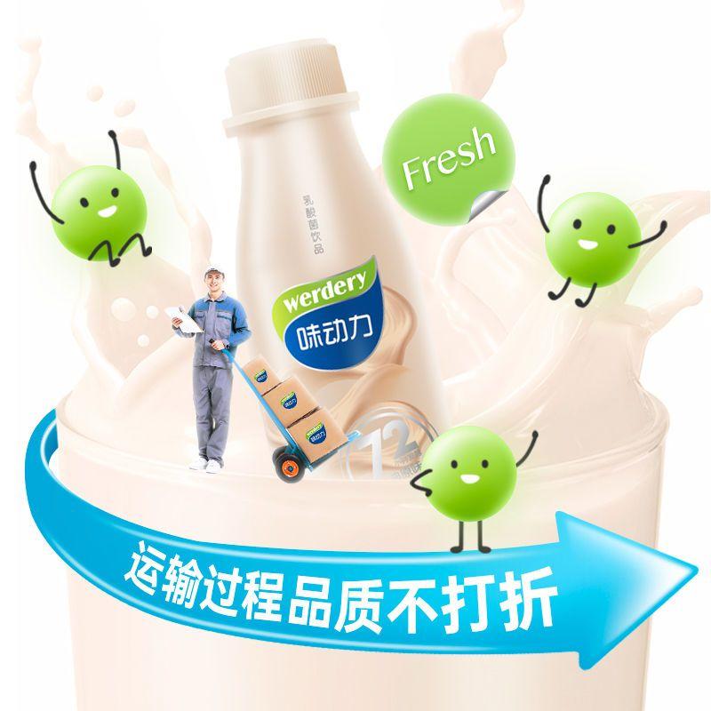 54163-【7月】WERDERY/味动力308ml*6乳酸菌饮料饮品整箱批发-详情图