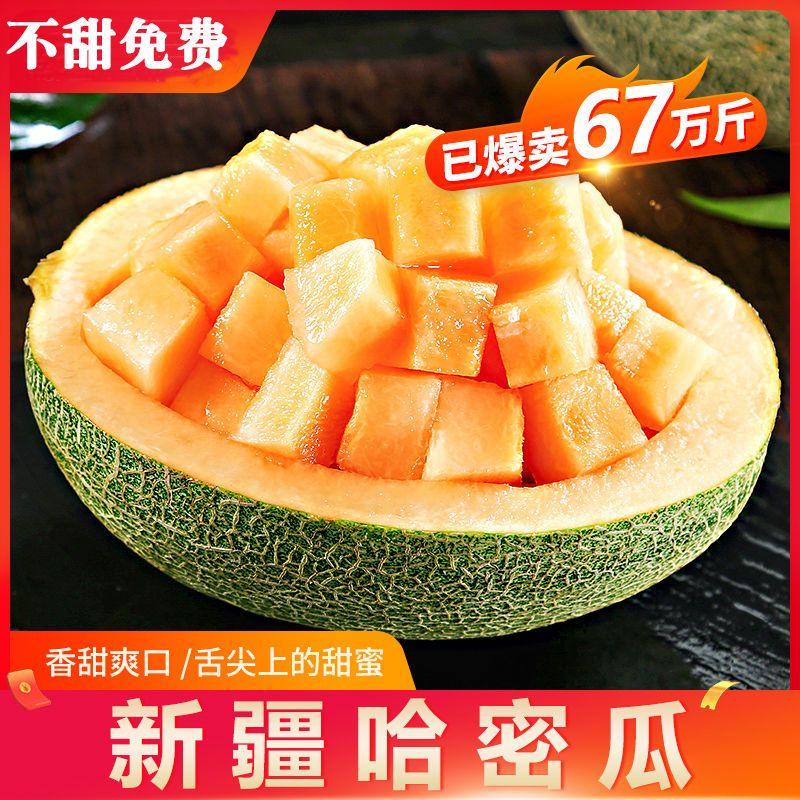 【不甜免费】哈密瓜新疆正宗爆甜孕妇应季新鲜水果西州蜜3/5/10斤