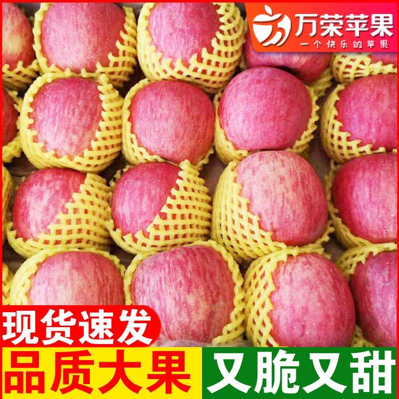 【万荣苹果】苹果水果红富士苹果新鲜脆甜冰糖心苹果丑苹果5/9斤