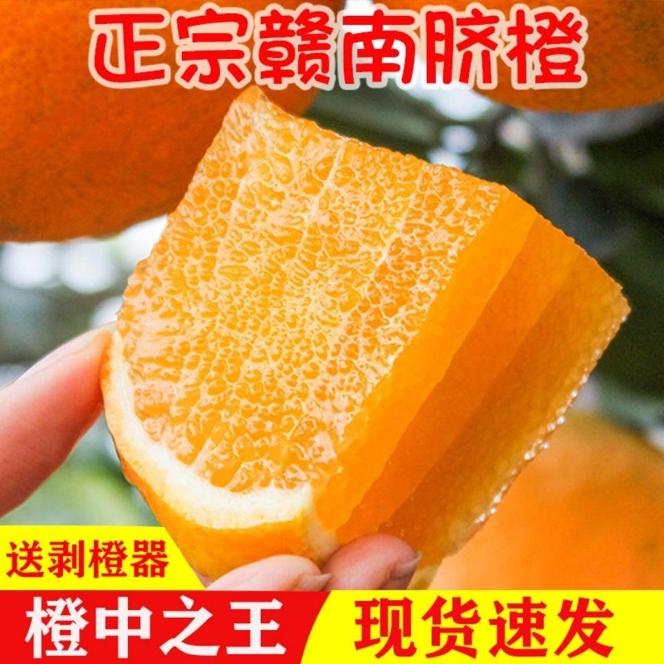 江西赣南脐橙现摘橙子新鲜孕妇水果薄皮橙子甜脐橙手剥橙整箱包邮