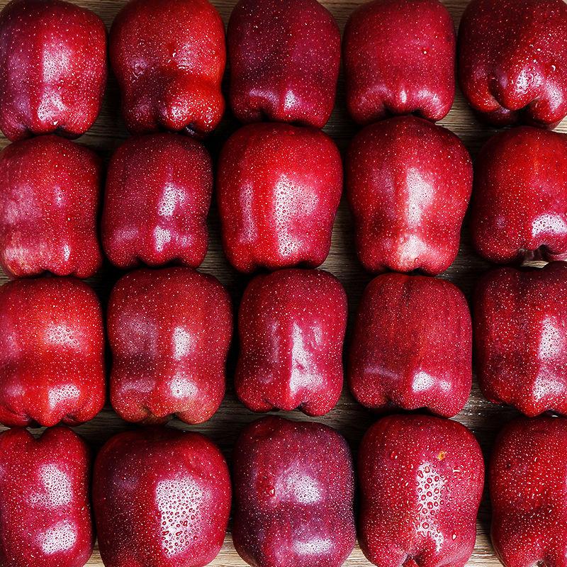 88841-甘肃天水花牛苹果10斤当季新鲜水果红蛇果5斤3斤粉面甜包邮整箱-详情图
