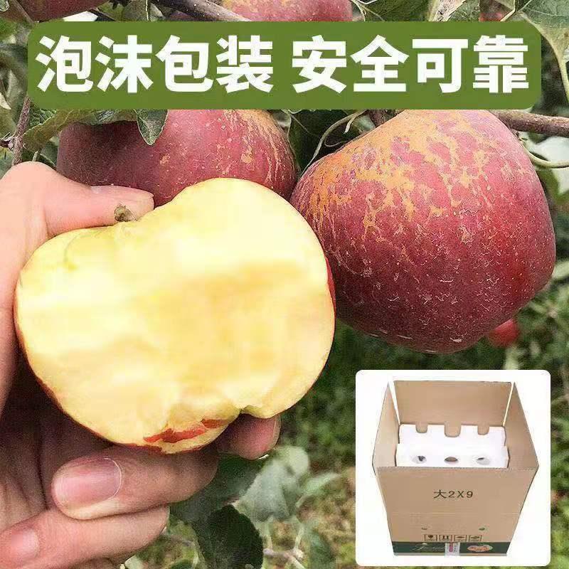 88738-【正宗大凉山冰糖心丑苹果富士特级大果新鲜整箱10斤非阿克苏苹果-详情图