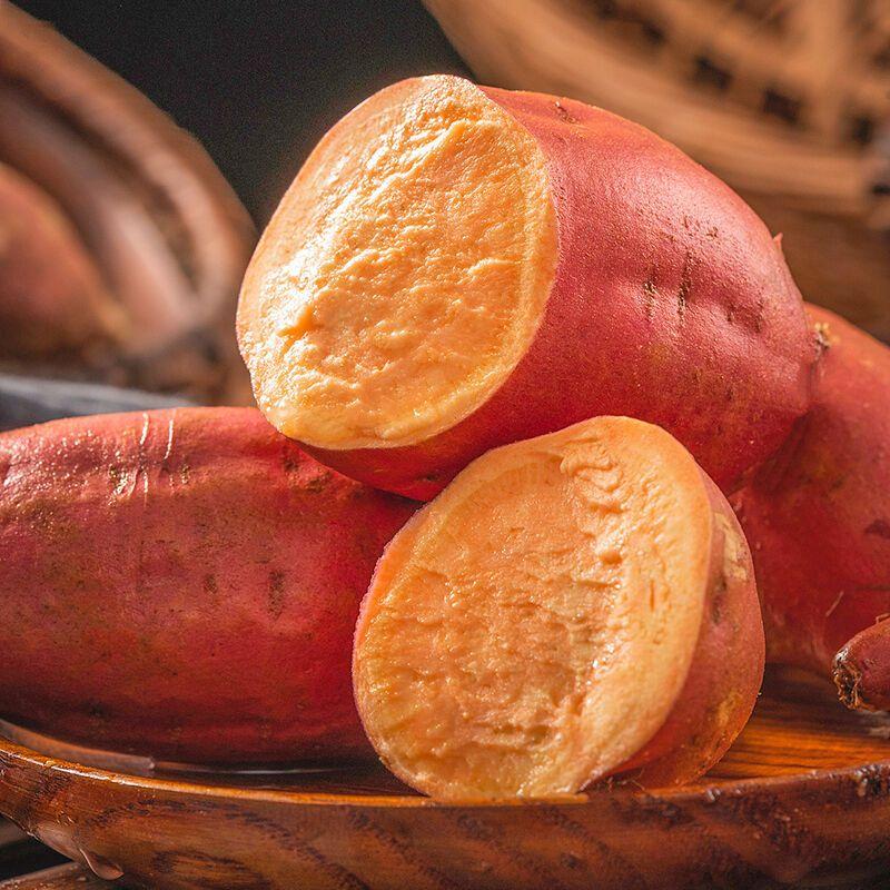 88773-西瓜红番薯沙地现挖新鲜蜜薯红薯板栗薯地瓜农家自种批发软糯香甜-详情图
