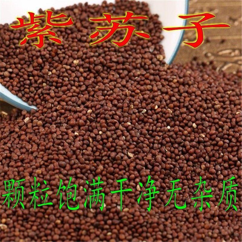 中药材紫苏子籽 长白山天然纯正新货鹦鹉芙蓉鸟黄雀食用