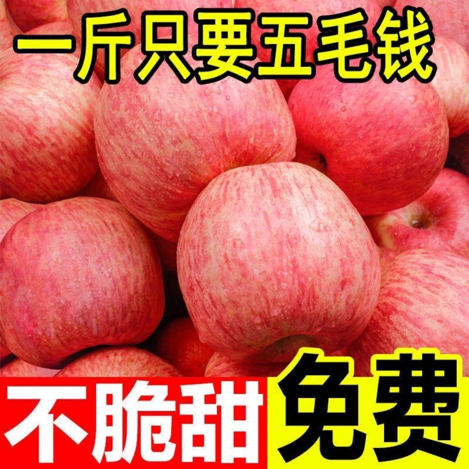 山西冰糖心红富士丑苹果正宗脆甜特级当季新鲜水果整箱批发5/10斤