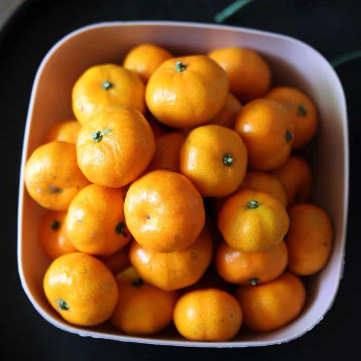 南丰小蜜桔新鲜应季水果批发一整箱橘子甜蜜橘桔子薄皮非沙糖桔