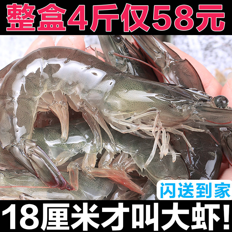青岛大虾超大海虾鲜活冷冻白虾对虾大虾新鲜海捕大虾海鲜非基围虾