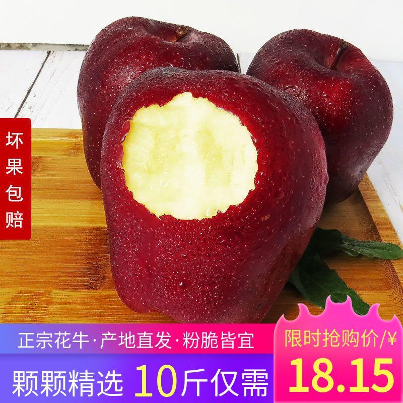 天水花牛苹果整箱3/5/10斤粉面刮泥婴儿应季现摘新鲜水果蛇果批发
