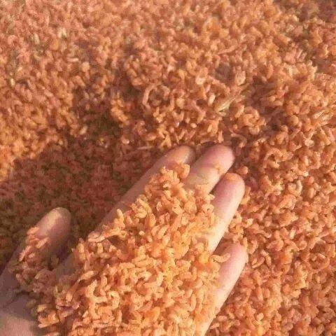 新货小海米500g250克50克迷你虾米干货海虾仁干金钩海米 海鲜干货